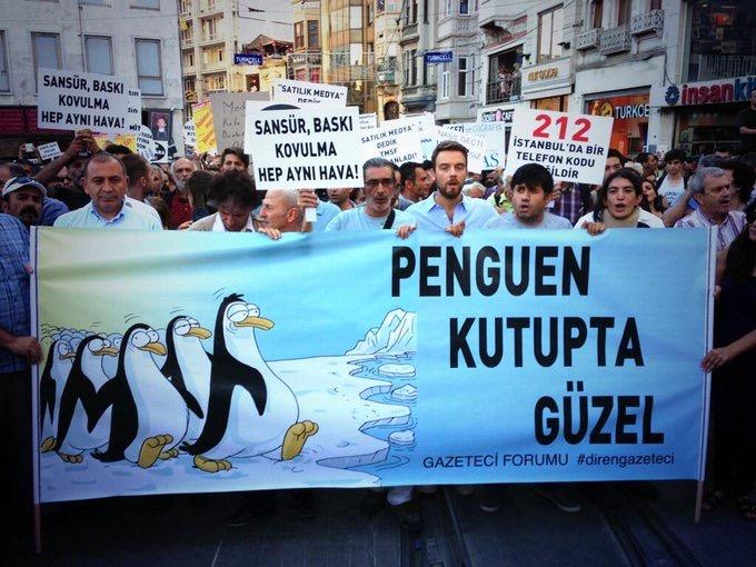 penguins Turkey
